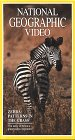 National Geographic's Zebra: Patterns in the Grass